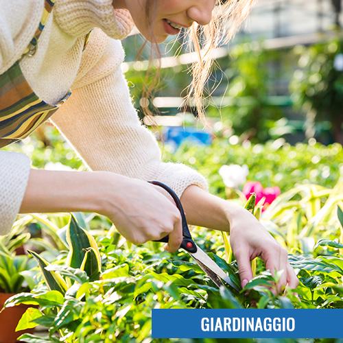 Giardinaggio - Giordano Ferramenta